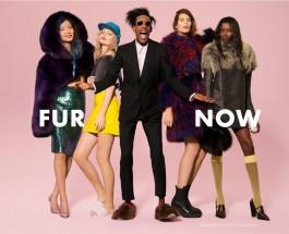 fur now 2014